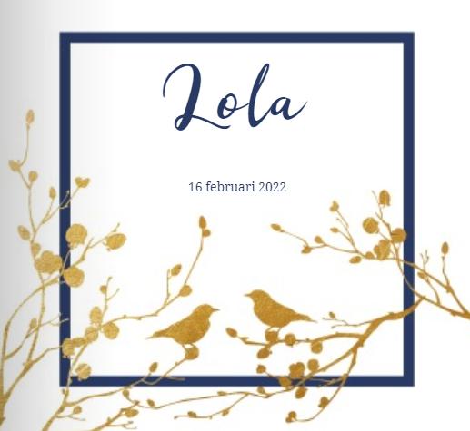 Geboortekaartje Lola thema goud.
