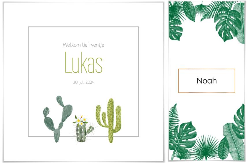 Gebooortekaartjes thema planten en bloemen. Kindjes Lukas en Noah.