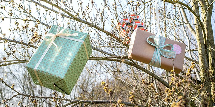 Gifts hanging on ribbons in trees