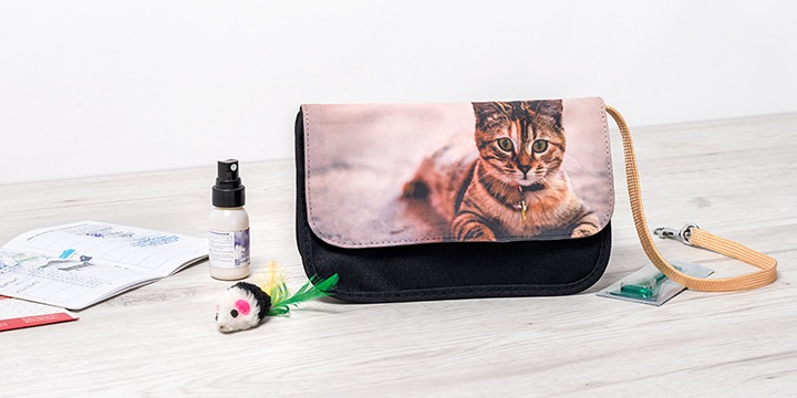 Makeup bag as travel bag for cat