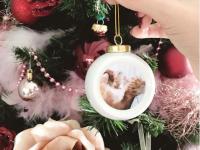6 idées créatives de nos clients pour Noël