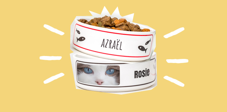 Idée cadeau original pour Noel -  gamelle en céramique pour animal de compagnie