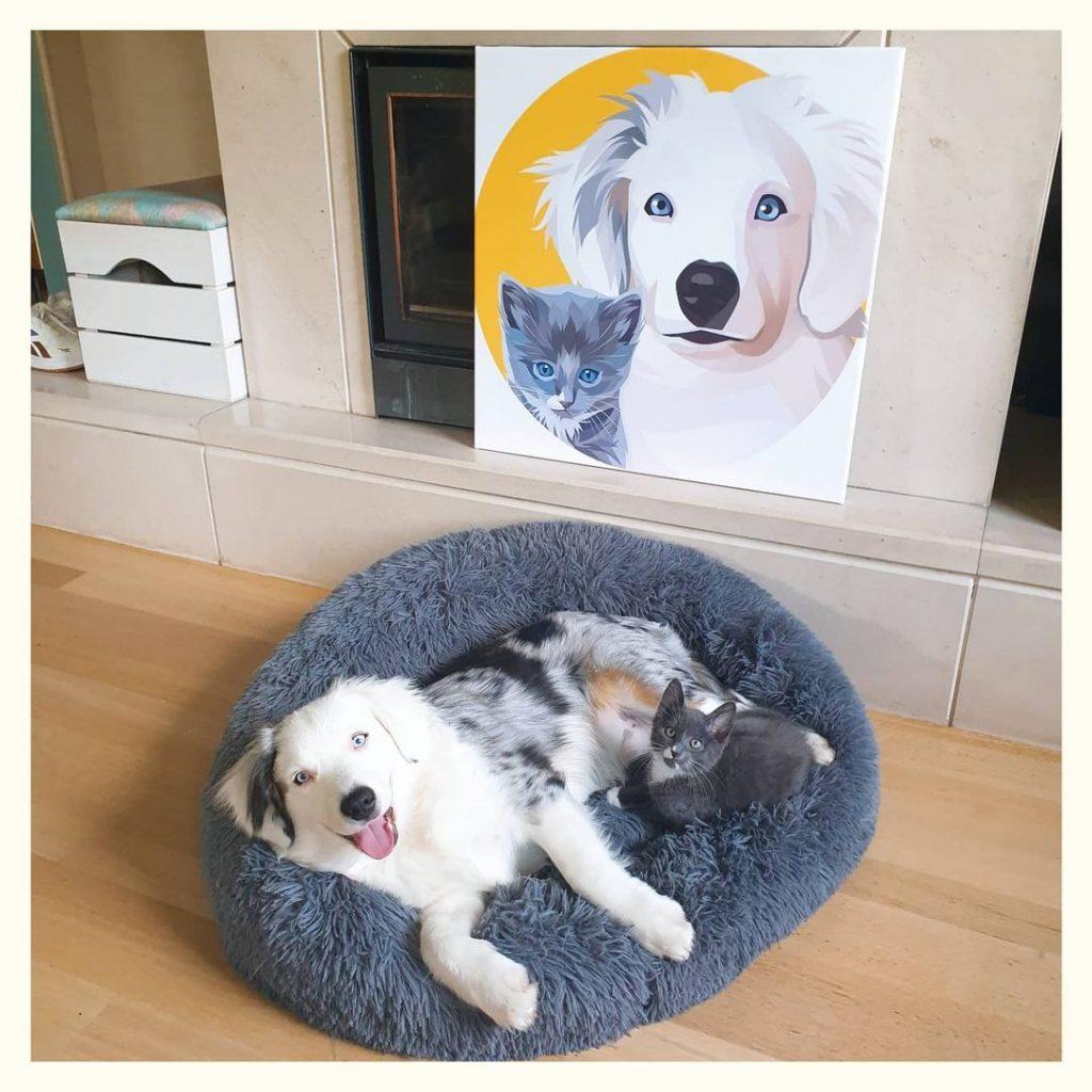 idee photo animal de compagnie :Toile photo par smartphoto - création et photo de thechroniclesofecho.and.loki sur instagram