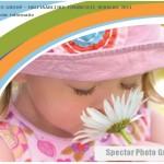 2011_Halfjaarlijks financieel verslag_thumbnail