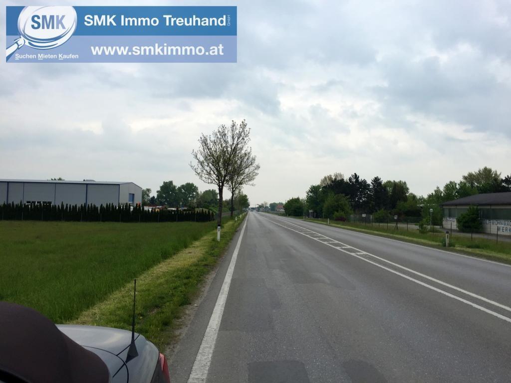 Grundstück Kauf Niederösterreich Baden Teesdorf 2417/6618  2