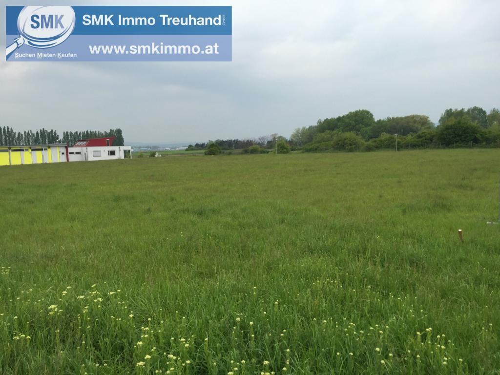 Grundstück Kauf Niederösterreich Baden Teesdorf 2417/6618  5