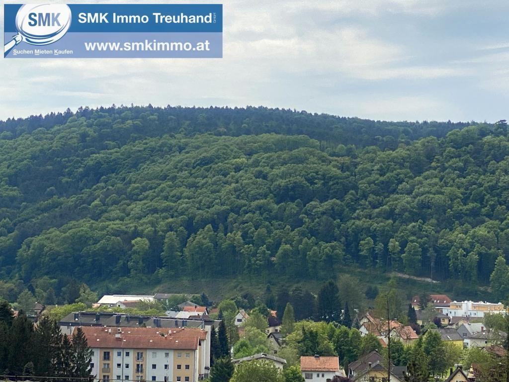 Grundstück Kauf Niederösterreich Wiener Neustadt Land Brunn bei Pitten 2417/7301  2 Aussicht