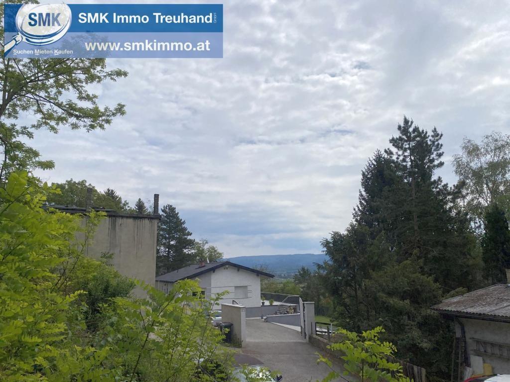 Grundstück Kauf Niederösterreich Wiener Neustadt Land Brunn bei Pitten 2417/7301  3 Straße