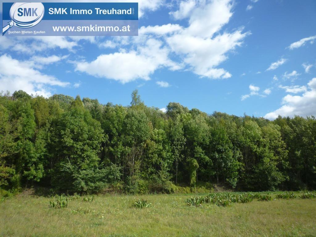 Grundstück Kauf Niederösterreich Mistelbach Guttenbrunn 2417/7442  1