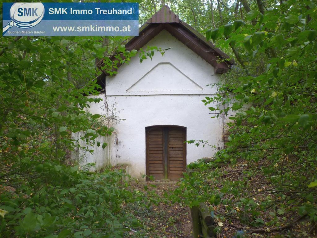Grundstück Kauf Niederösterreich Mistelbach Guttenbrunn 2417/7442  9