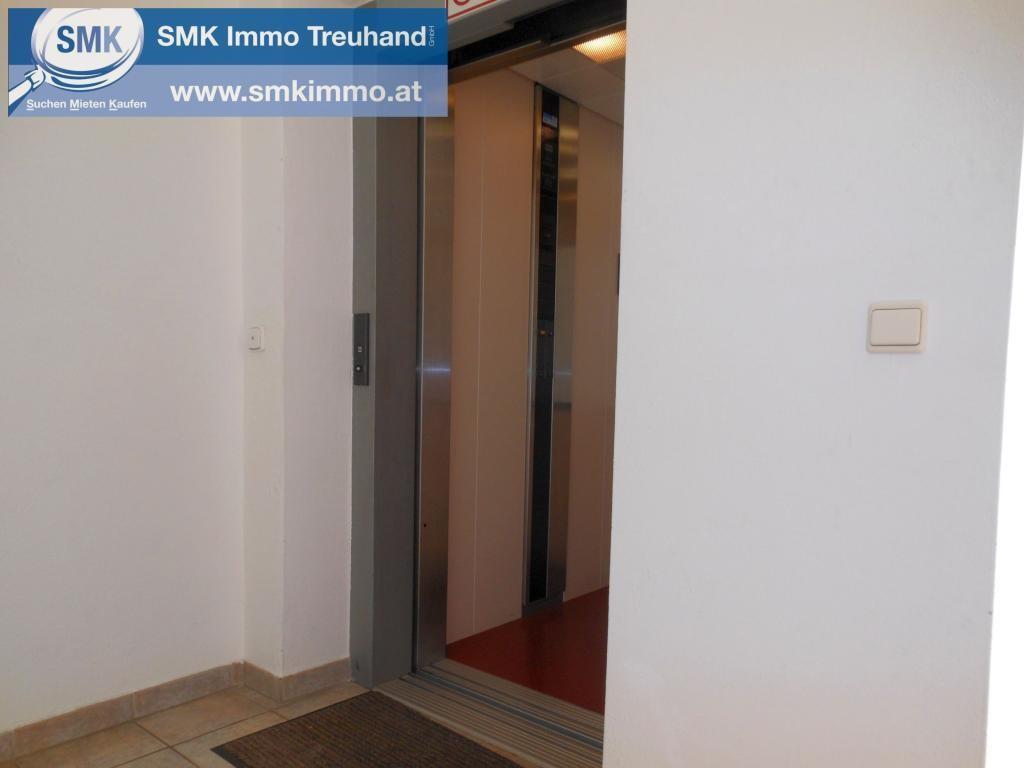Wohnung Miete Niederösterreich Krems Langenlois 2417/7592  8