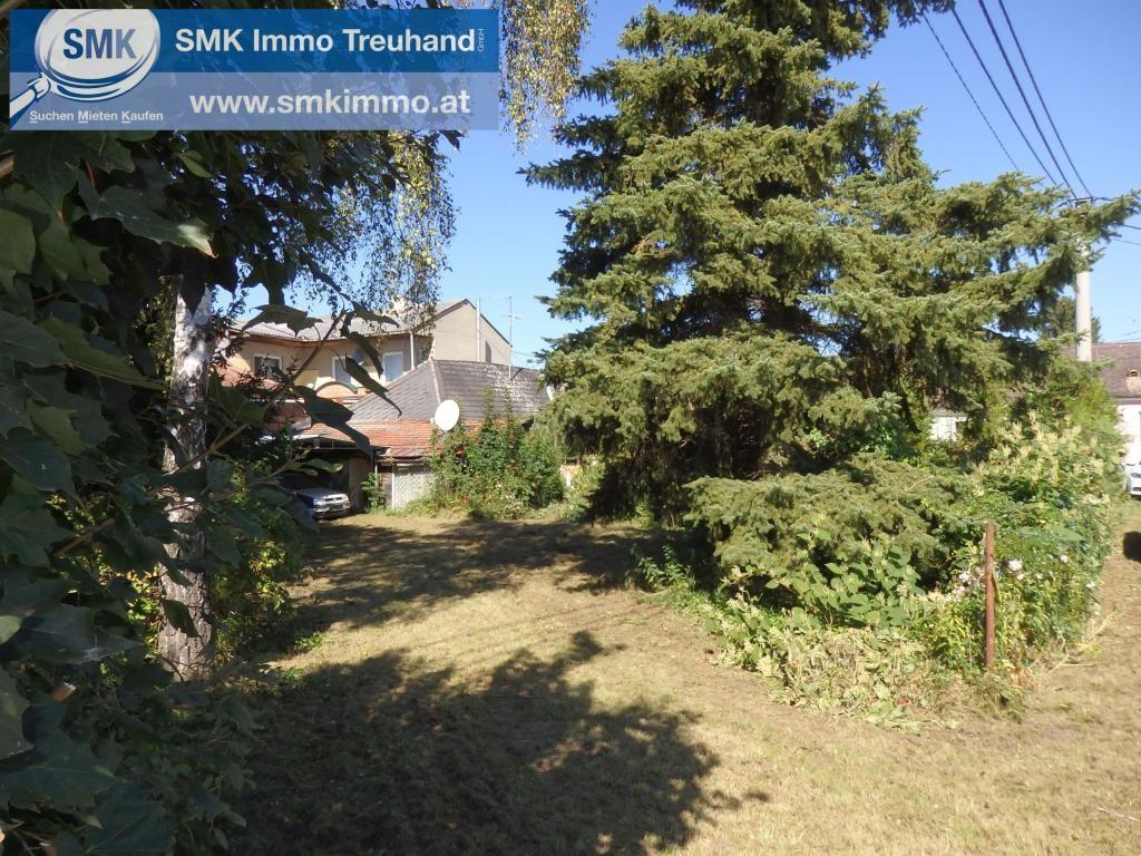 Grundstück Kauf Niederösterreich Hollabrunn Hollabrunn 2417/7685  2a