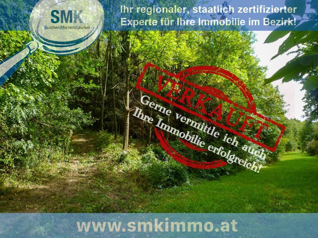 Grundstück Kauf Niederösterreich Mistelbach Guttenbrunn 2417/7795  1