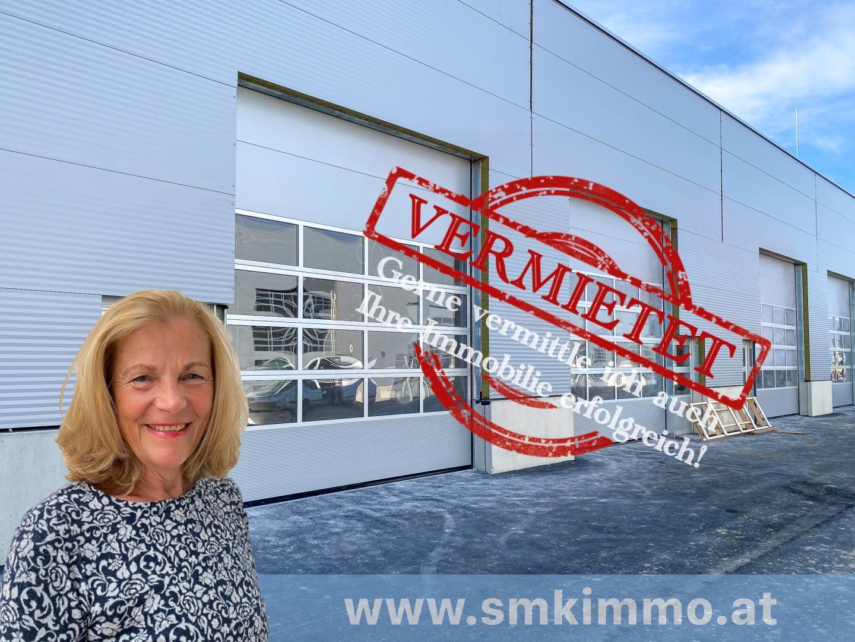 Gewerbeobjekt Miete Niederösterreich Korneuburg Spillern 2417/7887  Ganzes Areal-2
