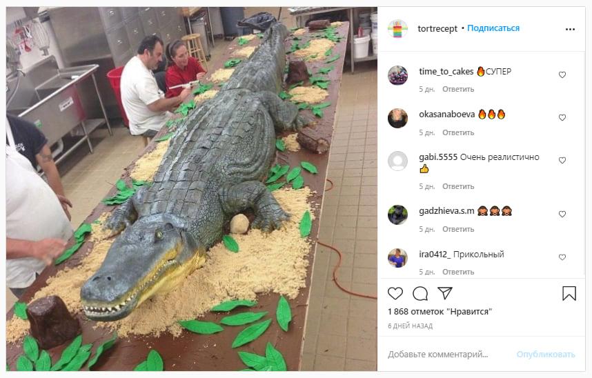 Огромный торт в виде крокодила — чем не повод выразить свое мнение в соцсетях. Ссылка на пост