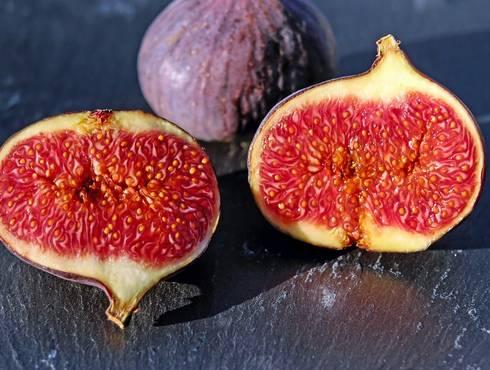 Figs 1620590 1280