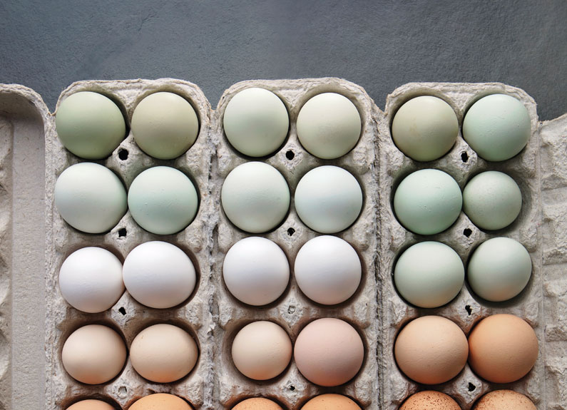 6 smart recipes for 1 versatile ingredient