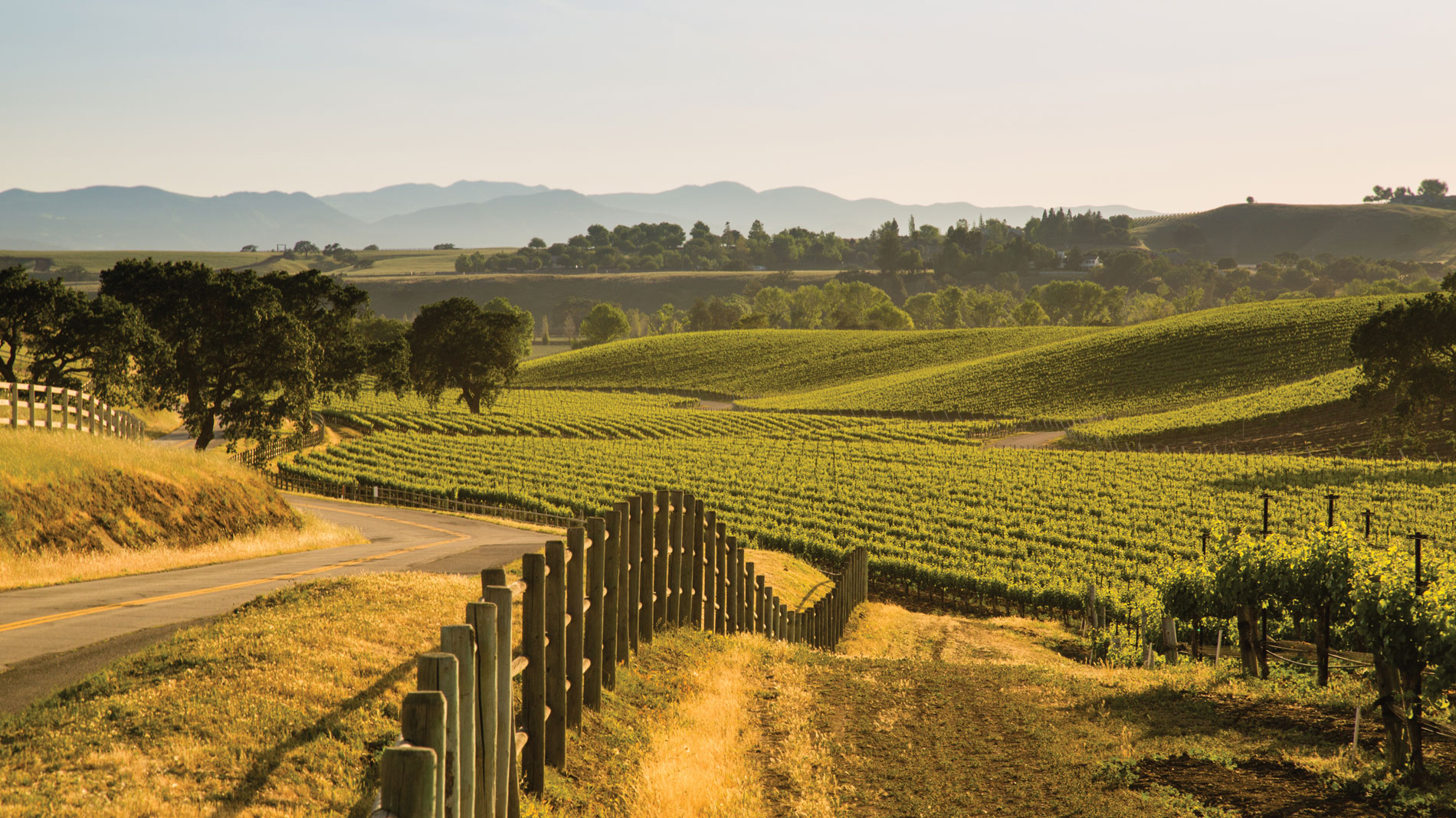 Washington, New York and Santa Barbara are three locations for great American wine.
