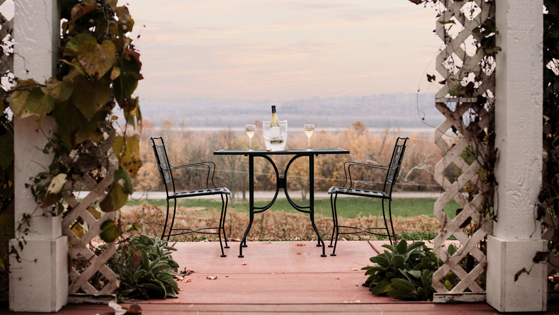 Defiance Ridge Vineyards offers a perfect escape from the city