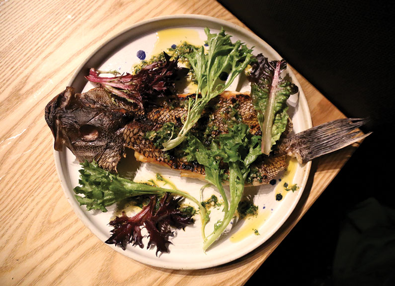 an artfully plated dish of fish and salad greens