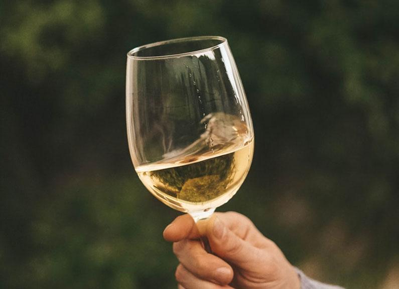 2013 Noboleis Traminette wine