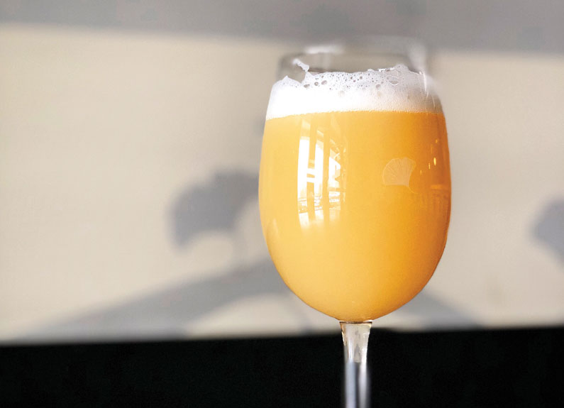 a wine glass filled with a hazy orange IPA