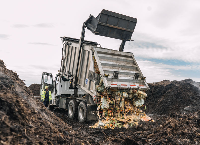 a dump trunk unloaded a large amount of organic matter into a composting site