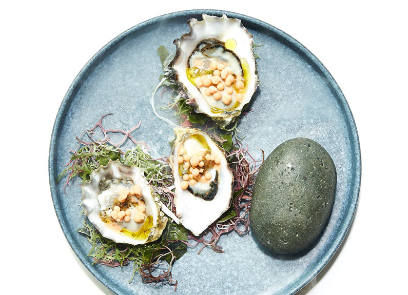 a gray plate with raw oysters