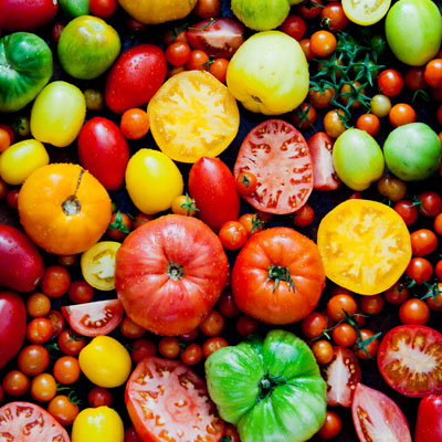 J. Devoti's Trattoria's Garden Tomato Salad