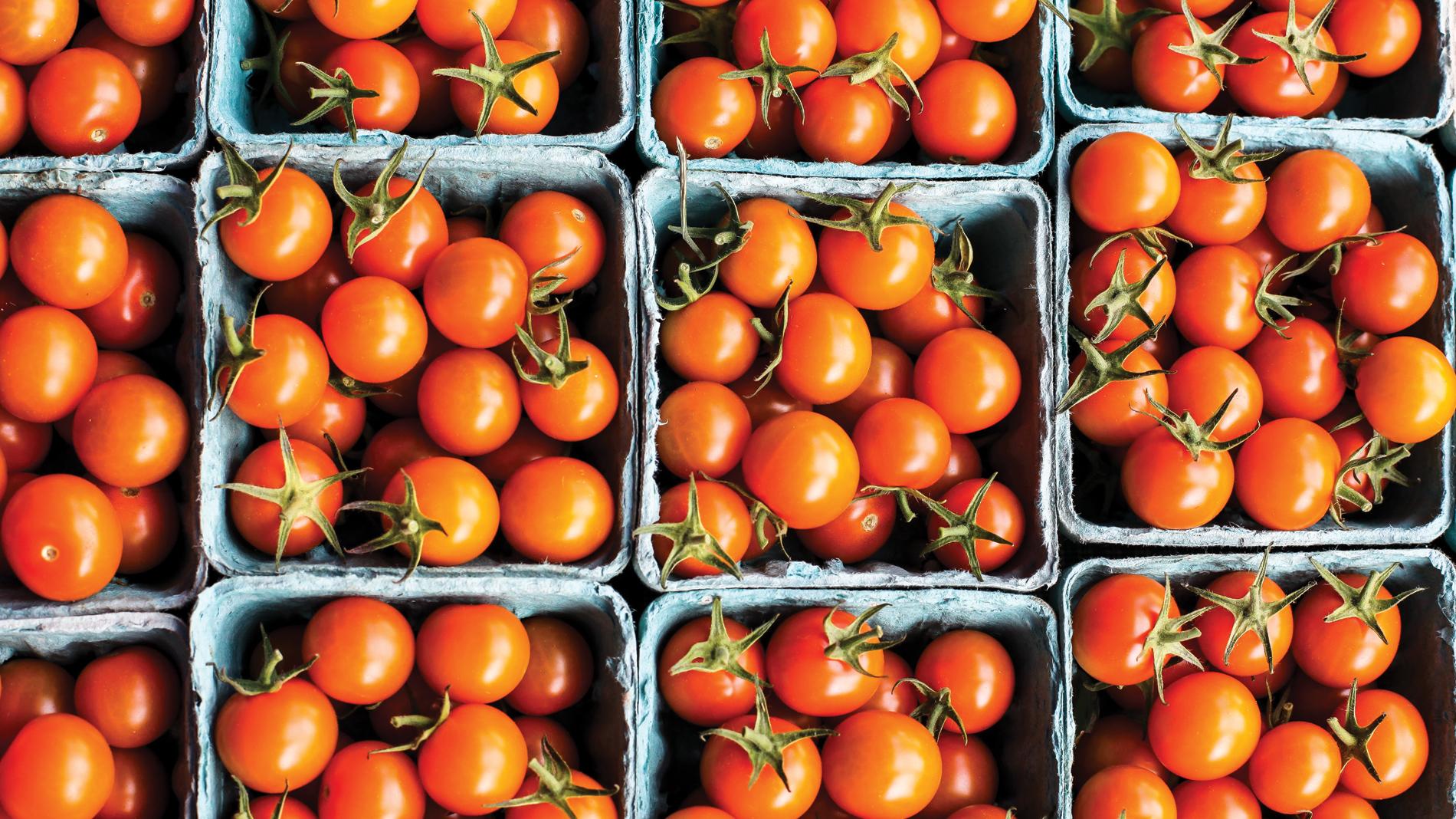 Tomatoes will be in season soon in St. Louis.