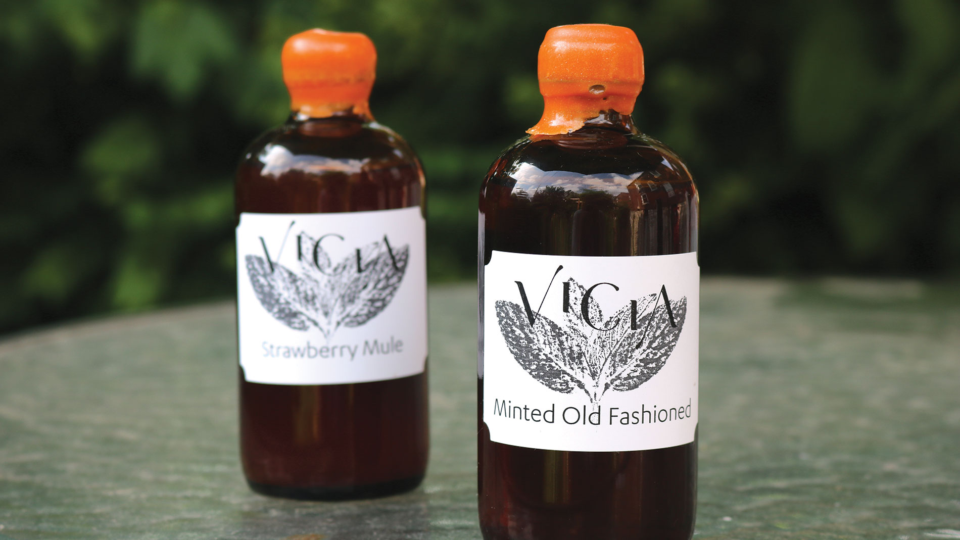 vicia bottled cocktails