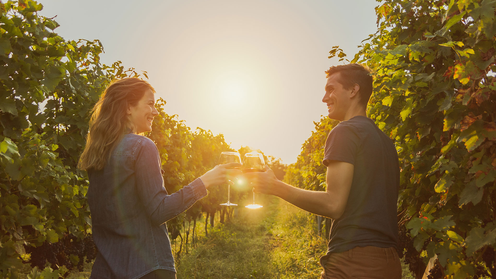 guide to missouri area wineries