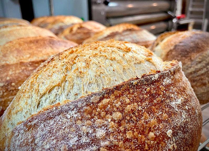 sourdough bread from mr. meowski's in st. charles