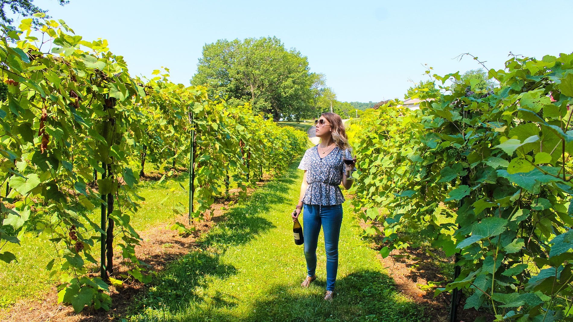Your guide to Midwest wine country