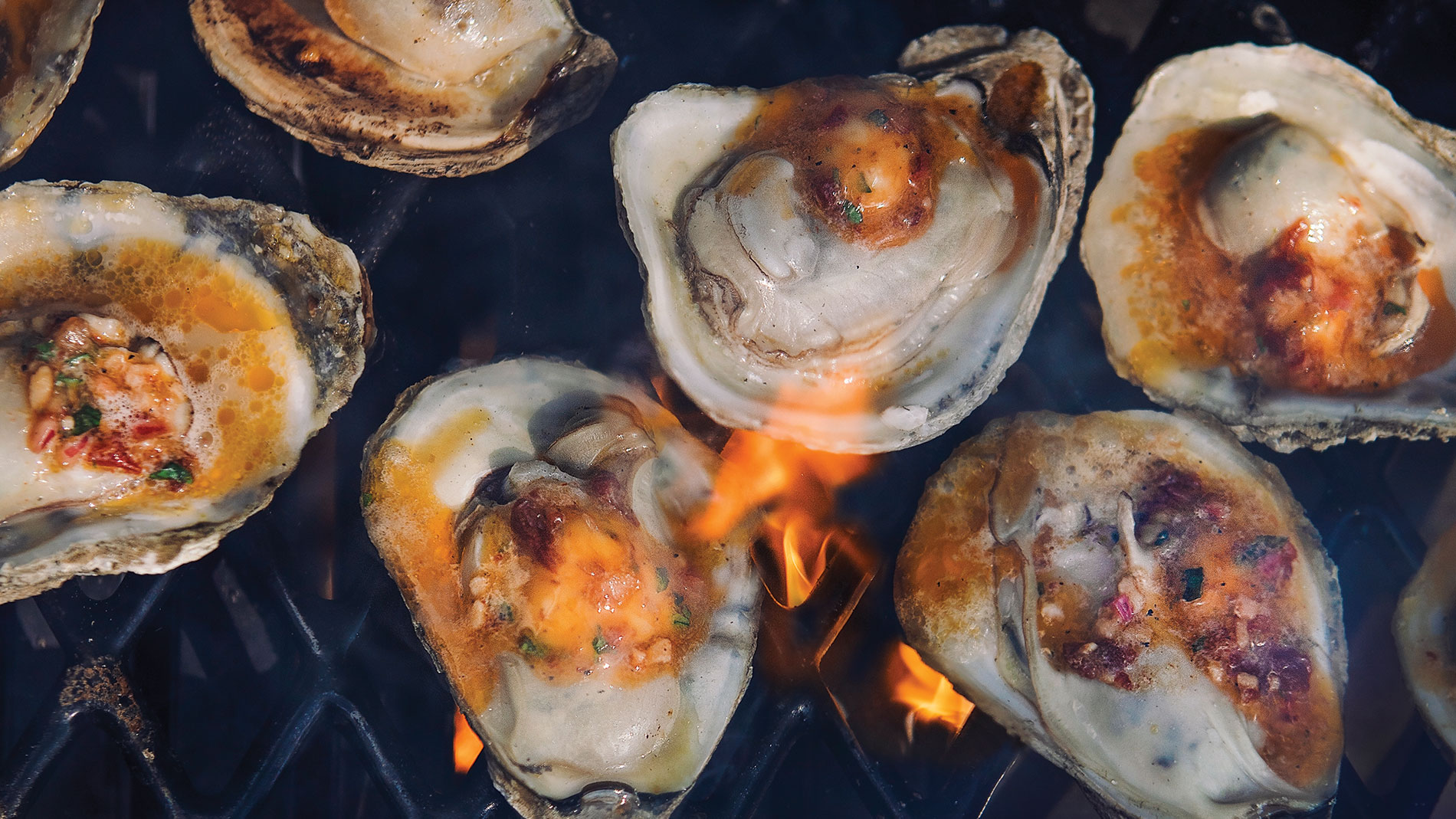 Grilled oysters with spiced tequila butter recipe