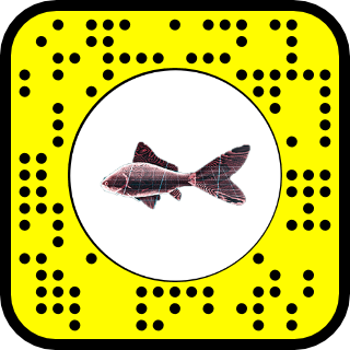 retro goldfish