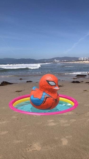 Spider Duck Thumbnail