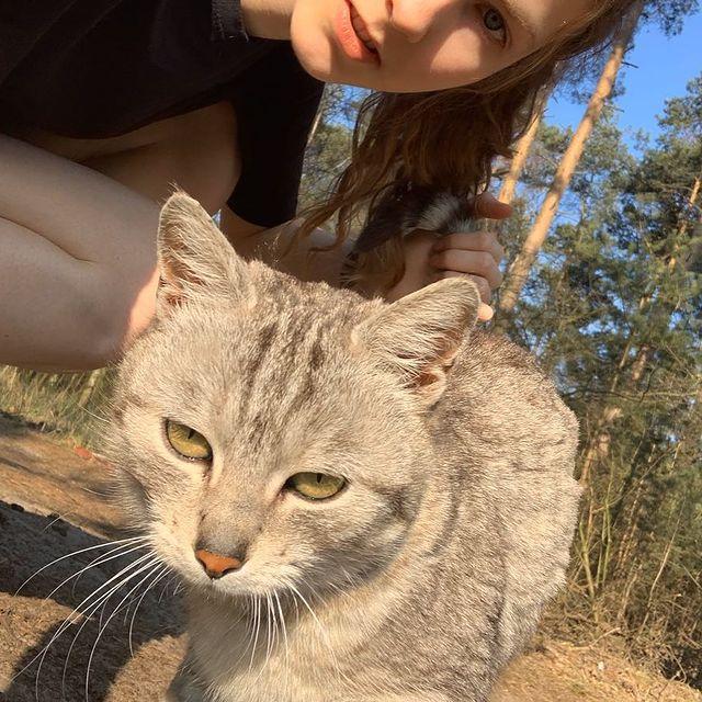 Caught kot #daily #instaphoto #photooftheday #cat #sun #niewiempocoalechybabosienudzetrocheteraz