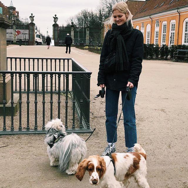 Hundelufter on duty 🐶❤️🐶