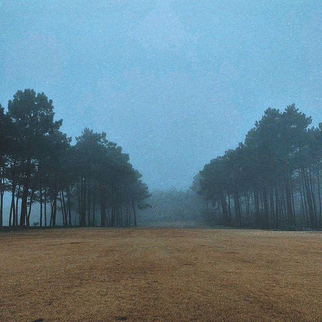 It's foggy outside 🎶