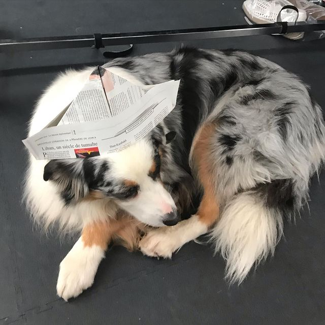 Hair & paper hat