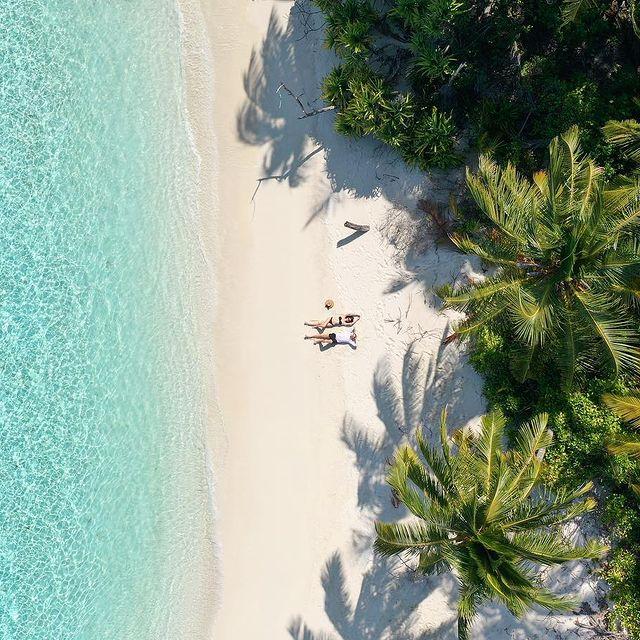 Palm tree beach🌴☀️ #palmbeach#indianocean#maldives#sand