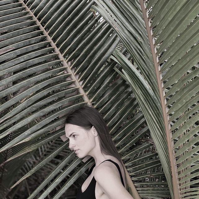 Into the wild🌿 #island#palm#tree#ocean#maldives