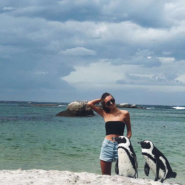 Chilling with the Penguins🐧
