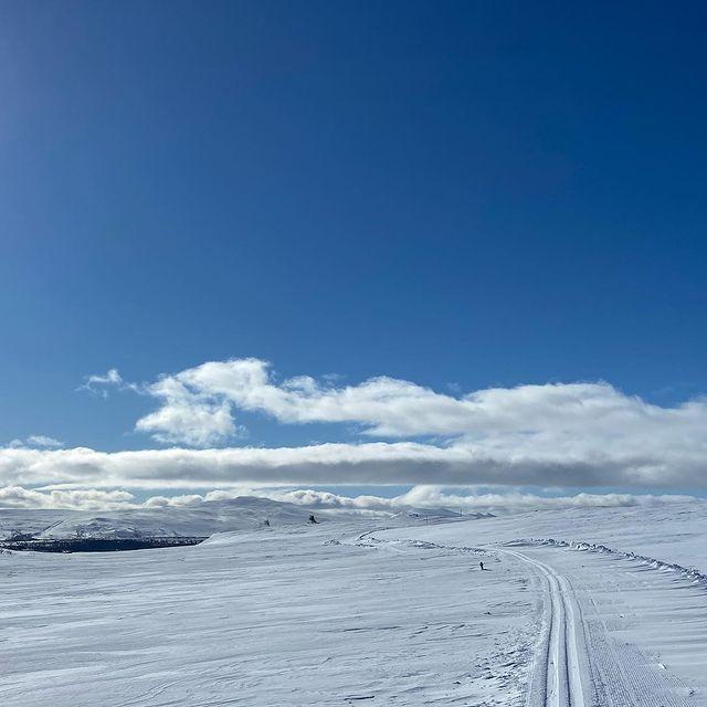 On/off track, snowscapes, stars and never ending skies. 💙   #winter #fjällen #sweden #härjedalen #jämtland #vackrastivärlden