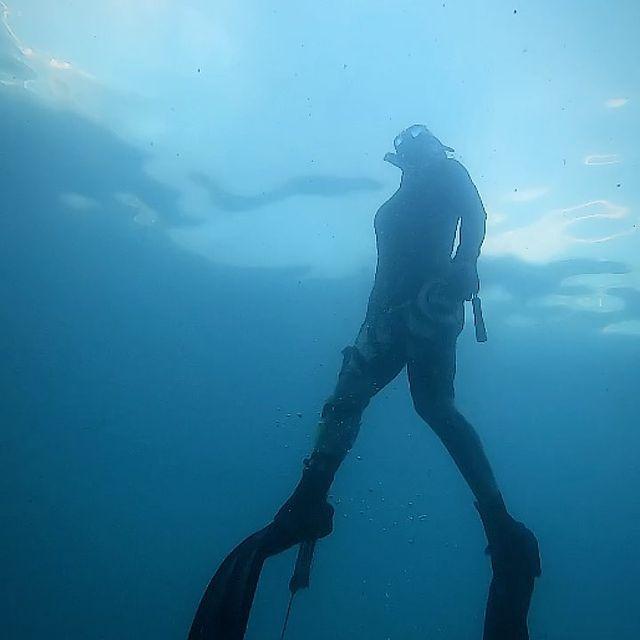Diving sensation. @seusurf  #cacasubmarina #portodegalinhas #pernambuco #brasil #sub #dive