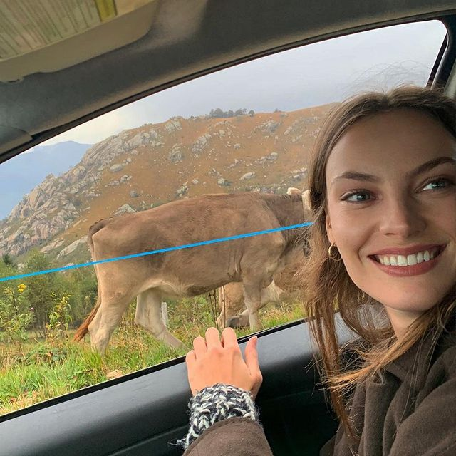 if your face doesn't look like this when you drive past a cow then I don't want to be your friend
