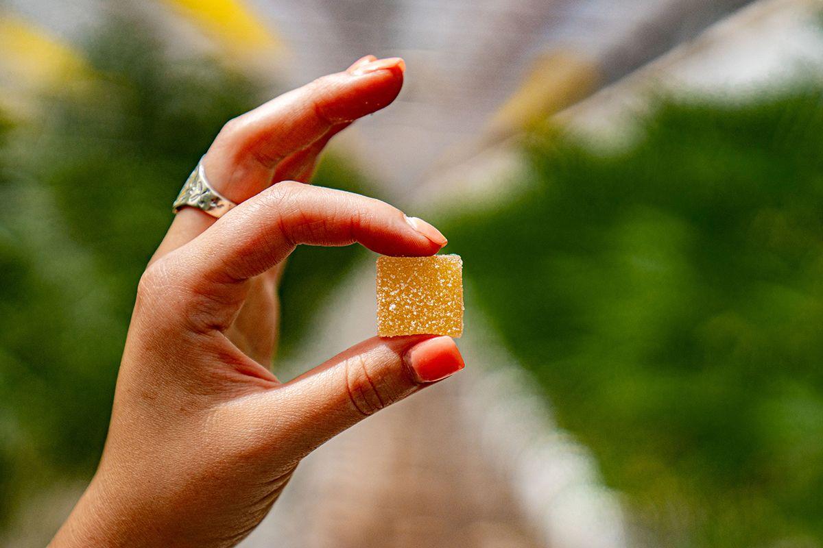 best-cannabis-edibles