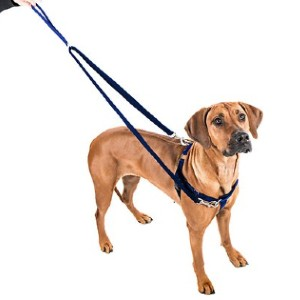 2 Hounds Design Freedom No Pull Nylon Dog Harness & Leash - Best Dog Harness for Walking: Safe Harness