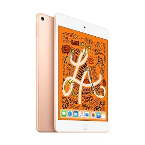 Apple iPad Mini - Best Tablet for Internet Browsing:  Super portable